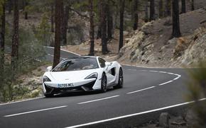 Обои McLaren, дорога, деревья, стволы, 570GT, car, авто, road