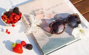 Картинка ягоды, бабочка, очки, книга, Монро