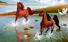 Картинка цветы, flowers, horses, кувшинки, лошади, lines, blue, птицы, grass, хвост, sky, lotuses, water-lilies, грива, Chasing ...
