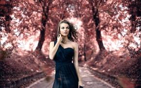 Картинка осень, макияж, прелесть, Alessandro Di Cicco, Touch me gently