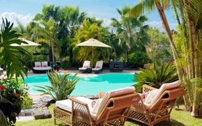 Картинка диван, бассейн, кресла, лежаки, тумба, пальмы., pools