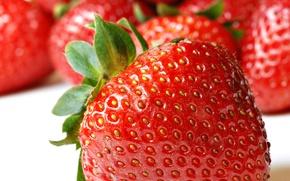 Обои ягоды, макро, фрукты, плоды, клубничка, клубника, ягода