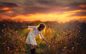 Обои поле, закат, простор, девочка