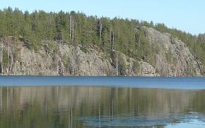 Картинка лес, озеро, карелия