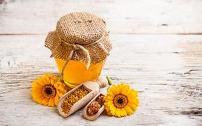 Обои цветы, прополис, баночка, мед, желтые
