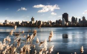 Картинка небо, вода, озеро, здания, нью-йорк, сша, центральный парк