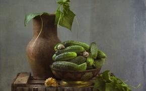 Картинка текстура, ракушки, кувшин, натюрморт, огурцы, овощ