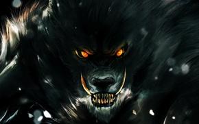 Картинка глаза, взгляд, тьма, волк, зубы, ярость, оскал, оборотень
