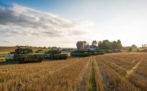 Картинка поле, Танки, бронетехника, Leopard 2A