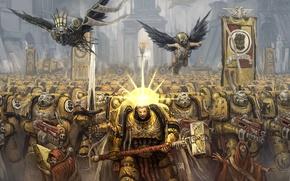 Картинка желтый, Warhammer, Black Templars, 40000, Империум