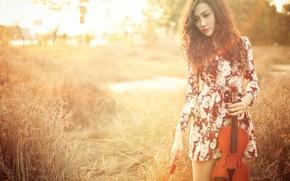 Картинка девушка, скрипка, азиатка