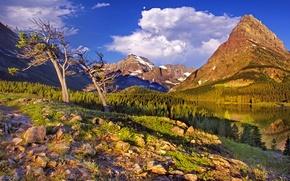 Картинка лес, небо, трава, облака, снег, деревья, горы, озеро, камни, glacier national park