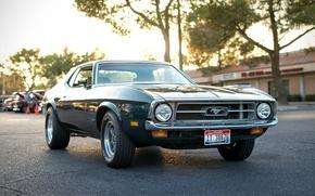 Картинка ретро, Mustang, Ford, классика, передок