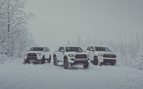 Картинка зима, снег, white, Toyota, пикап, snow, pickup, TRD, Tundra, Tacoma