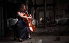 Картинка игра, виолончель, музыкальный инструмент, Giada Gheri
