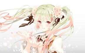 Обои цветы, арт, улыбка, аниме, sakura miku, лепестки, девушка, platina77, vocaloid