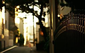Картинка дорога, макро, деревья, улица, забор, вечер, ограда, ворота, размытость, прутья, боке, железные