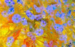 Обои цветы, лепестки, узор, рендеринг, линии