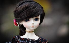 Картинка цветок, волосы, кукла, синие глаза, doll, BJD