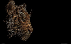Картинка тигр, фон, чёрный
