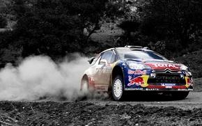 Обои Citroen, Машина, DS3, Ситроен, Пыль, Скорость, WRC, Rally, Спорт, Red Bull, Ралли