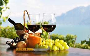 Картинка бутылка, стол, вино, красное, виноградники, сыр, хлеб, бокалы, корзина, виноград