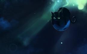 Обои планета, котэ, apofiss, летун