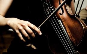 Обои искусство, скрипка, музыка