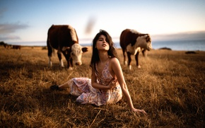 Картинка девушка, коровы, Jesse Herzog