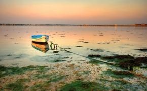 Обои тина, озеро, Лодка, мель, 158