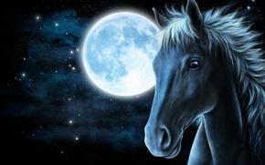 Картинка морда, звезды, рендеринг, конь, луна, лошадь