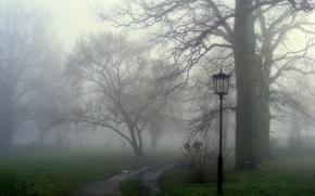 Обои природа, дорожка, трава, туман
