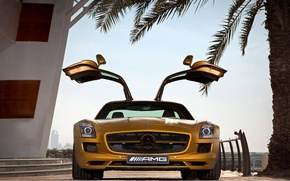 Обои SLS AMG Desert Gold Edition, Двери, Золотой, Ступеньки, Mercedes Benz, Пальма