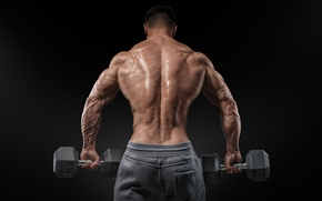 Картинка men, muscular, bare back