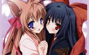 Картинка руки, кимоно, бант, ушки, подруги, большие глаза, Neko girl