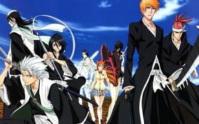 Картинка sword, game, Bleach, anime, Kuchiki Rukia, katana, bankai, captain, asian, Kurosaki Ichigo, manga, japanese, Hitsugaya …