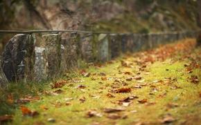 Картинка грусть, осень, трава, местность, ограждение, травинки, опавшие, оранжевые листья, сезон, оригинально., каменный забор