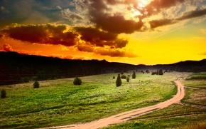 Картинка дорога, поле, лес, небо, трава, солнце, облака, деревья, закат, цветы, тучи, растения, тропинки