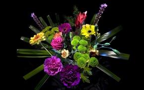 Картинка свет, букет, Розы, черный фон, Roses, background, Герберы, Хризантемы, Гвоздики, Bouquets