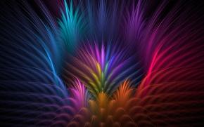 Картинка цветок, лучи, свет, линии, цвет, перья, лепестки, объем, симметрия