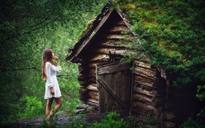 Картинка лес, девушка, дом