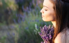 Картинка поле, девушка, цветы, задумчивость, природа, фон, отдых, widescreen, обои, настроения, размытие, брюнетка, фиолетовые, wallpaper, цветочки, …