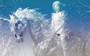 Картинка зима, белый, конь, Амазонка
