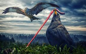 Картинка птицы, червяк, орёл