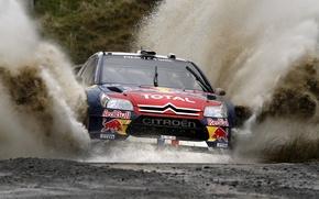 Картинка Вода, Гонка, Citroen, Брызги, Фары, Red Bull, DS3, WRC, Rally, Ралли
