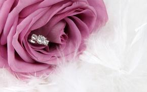 Картинка цветок, роза, кольцо, rose, flower, ring