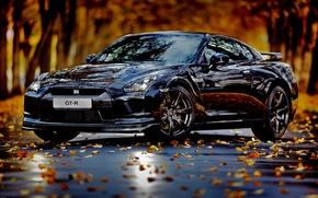 Обои авто, осень, листья