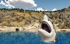 Обои пальмы, челюсти, акула, пасть, берег, песок, море, в воде, зубы, облака, солнце, небо, скалы, камни