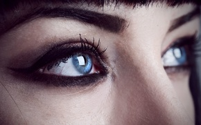 Обои Shelley Moore, brows, female, face, woman, girl, make up, eye, close-up, blue eyes
