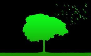 Картинка трава, птицы, природа, фон, дерево, минимализм